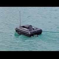 Swimming Surveyor